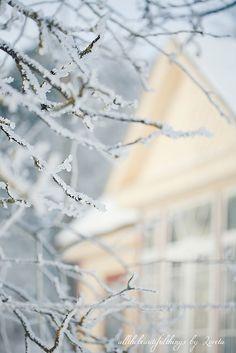 Winter Time by loretoidas