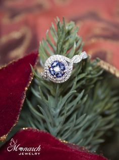 Holiday proposal idea ~  Plan to decorate the tree together or do a Christmas tree scavenger hunt.  Place your engagement ring in a place that she will be sure to see it.  Unless you plan on doing a scavenger hunt, then we suggest that you tie the ring on to the tree next to your last clue. Happy Holidays from Monarch Jewelry!  #WinterParkJewelry #Proposal #sayYes #PropsoalIdeas #DreamEngagementRing