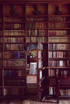 Who hasn't dreamed of having a hidden room behind a secret door...? #studying #secretroom #secretdoor