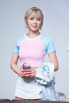 Cho A (AOA)