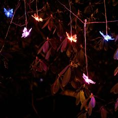 Have to have it. Mr. Light Solar Butterfly Curtain Light Garland with Color Changing LEDs $99.99
