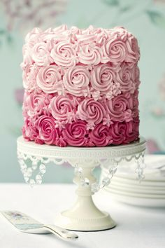 Pink Cake - Baby Shower Dessert Ideas » This cake is so pretty. Might do this style for mother's day!