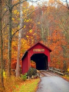 Covered bridge in the fall makes me longing for New England!