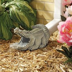 alligator drainspout - awesome I really like this idea, rather like having a gargoyle on the ground !