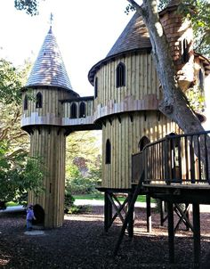 Ireland's largest tree house at Birr Castle, County Offaly