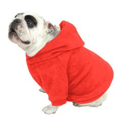 English Bulldog Hoodie Sweatshirt - Red