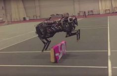 Watch MIT's Robot Cheetah Jump Over Obstacles | Popular Science