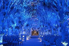 This is a great idea to incorporating blue into your wedding decor! Blue can create a magical touch to your special day!
