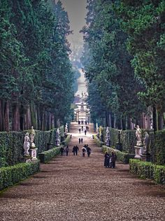 Boboli Gardens, Firenze, province of Florence , Tuscany region Italy Oh The Places You'll Go, Places To Travel, Places To Visit, Dream Vacations, Vacation Spots, Vacation Packages, Siena Toscana, Voyage Florence, Emilia Romagna