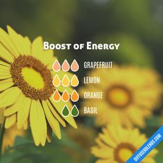 Boost of Energy - Essential Oil Diffuser Blend