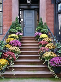 creating a garden space at a new york city apartment / beautiful entryway.
