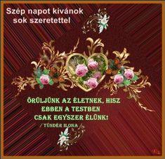 Emlékkönyv-képed helye - Fórum beszélgetések - marianna-design.qwqw.hu Roses, Album, Night, Pink, Rose, Card Book