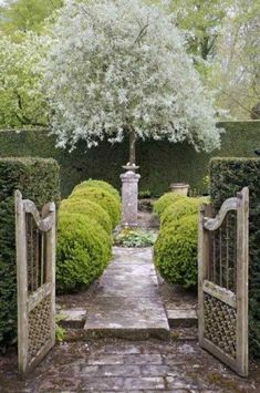 Image result for french courtyards