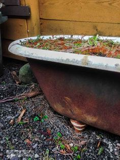 Rusty claw foot tub /  What would you do with these salvaged finds? via http://www.funkyjunkinteriors.net/