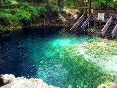 Madison Blue Springs State Park is an Other Outdoor Place in Lee. Plan your road trip to Madison Blue Springs State Park in FL with Roadtrippers. Best Swimming, Swimming Holes, Visit Florida, Florida Travel, Usa Travel, State Parks, Places To Travel, Places To See, Alabama