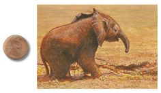 """""""Puddle Play"""" by Wes Siegrist, 2.5 x 3.5 inches, opaque watercolor, artofwildlife.com"""
