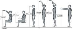 Dosah průměrné výšky 174,2 cm / UNISEX