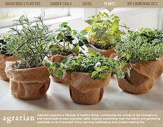 burlap herbs great gift ideas