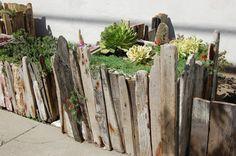 Driftwood garden edge