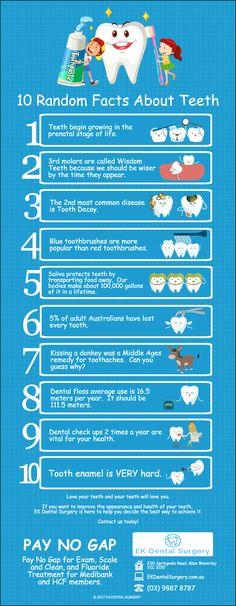 10 Random Facts About Teeth ekdentalsurgery.com.au