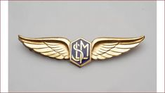 Car Logo Design, Lettering Design, Branding Design, Classic 350 Royal Enfield, Wing Tattoo Designs, Wood Logo, Pilot Gifts, Wings Logo, Eagle Logo