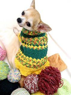 DIY Crochet Pineapple Dog Costume