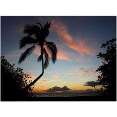 Trademark Fine Art Tropical Sunset Canvas Art by Pierre Leclerc, Size: 16 x 24, Multicolor