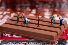 Kit Kat Garden - William Kass • Part of a photo series about an imaginative world for miniature people created with everyday objects and food.