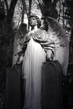 DeviantArt: More Like Highgate Cemetery II by Highgate Cemetery, Cemetery Statues, Cemetery Art, Angel Statues, Old Cemeteries, Graveyards, Cemetery Angels, The Magnificent Seven, Angels Among Us