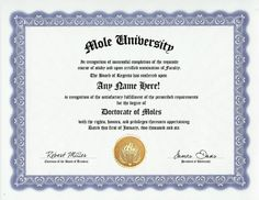 Mole Degree: Custom Gag Diploma Doctorate Certificate (Funny Customized Joke Gift - Novelty Item) by GD Novelty Items. $13.99. One customized novelty certificate (8.5 x 11 inch) printed on premium certificate paper with official border. Includes embossed Gold Seal on certificate. Custom produced with your own personalized information: Any name and any date you choose.