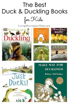 Recommendations of duck and duckling books for babies through early elementary age. Nonfiction & fiction books for a duck or duckling unit. Includes a discussion of which books are Montessori friendly - Living Montessori Now Preschool Books, Preschool Curriculum, Preschool Farm, Homeschooling, Montessori Toddler, Toddler Preschool, Toddler Books, Childrens Books, Duck And Ducklings