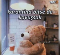 We Bare Bears, English Quotes, My Mood, Cool Words, Bff, Best Friends, Teddy Bear, Tumblr, Stickers