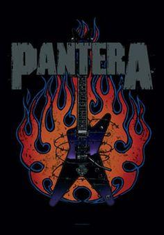 Pantera Guitar Fabric Poster
