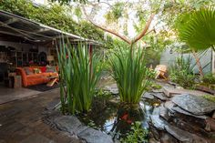 perfection... In Los Angeles, one woman lives in a miniature botanical garden of her own creation, with fruit trees, Peruvian cactuses and a pond with a turtle named Ting.