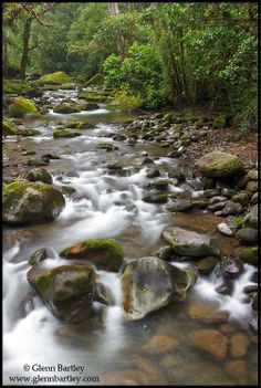 Rio Savegre, Costa Rica | Glenn Bartley Nature Photography