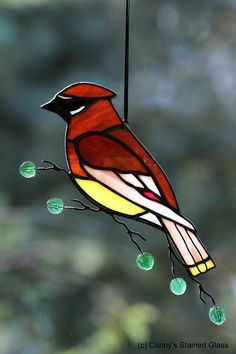 A stunning Cedar Waxwing stained glass suncatcher for your home. This beautifully handcrafted suncatcher measures approximately 9.75 X 4.5. I added wire work including glass leaves on the wire branch. I take pride in my work to ensure you will be totally satisfied as evident in the