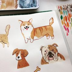 Dog illustrations More