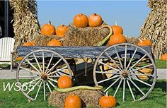 Straw and Pumpkin Lantern Halloween Photo Backdrop Studio Photography Backdrop Background Studio Props Young Living, Peach Pork Chops, Best Pumpkin Patches, Causes Of Diabetes, Fat Burning Diet, Halloween Photos, Halloween Camera, Lose Body Fat, Healing Herbs