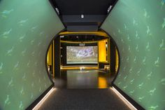 The Springbok experience Interactive Museum, Cape Town, Modern, Fan, Twitter, Sports, Hs Sports, Sport, Fans