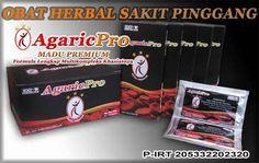 Obat Sakit Pinggang Terampuh Alami Dan Tradisional: http://www.agaricpro.com/obat-sakit-pinggang-terampuh-alami-dan-tradisional/