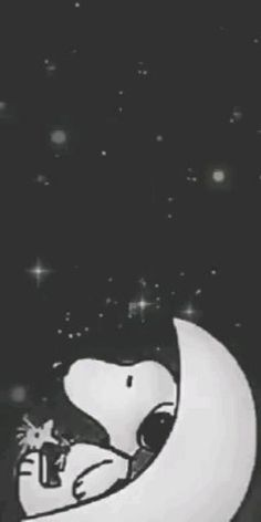 Good Night Gif, Good Night Wishes, Peanuts Movie, Peanuts Snoopy, Snoopy Shop, Snoopy Videos, Snoopy Watch, Snoopy Gifts, Snoopy Family