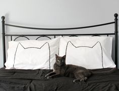 Pillowcases perfect for a cat nap.