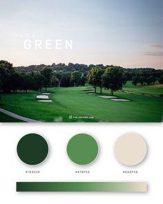 37 Beautiful Color Palettes For Your Next Design Project Green color palettes, schemes & combination Website Color Palette, Flat Color Palette, Green Palette, Pantone Colour Palettes, Pantone Color, Color Schemes Design, Web Colors, Bussiness Card, Color Psychology
