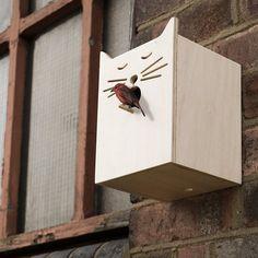 (18) Fancy - Sylvester Bird Box