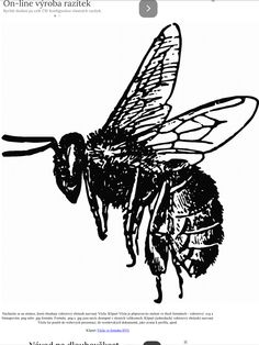 Honeybee drawing animated from Berserk on. 15 Honeybee drawing animated professional designs for business and education. Clip art is a great way to help illustrate your diagrams and flowcharts. Public Domain, Bee Outline, Bee Sketch, Honey Bee Tattoo, Bee Silhouette, Bee Drawing, Bee Art, Black And White Drawing, Black Art