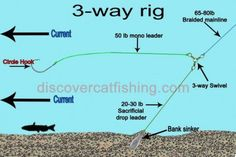 The two most popular rigs to catch catfish are the 3way rig and the slip rig also known as the carolina rig. Although both of these rigs can be fished in some of the same situations in certain conditions, each also has its own unique presantaion...
