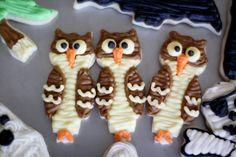 Halloween owl sugar