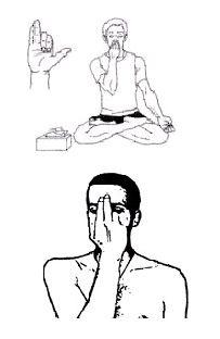 Pranayama . . . alternate nostril breathing
