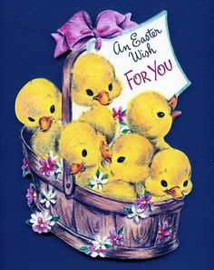 a basketful of Easter chicks