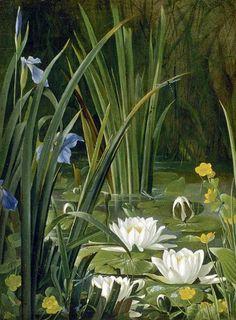 View of the Pond Pond Painting, Pond Life, Summer Garden, Garden Pond, Winter Landscape, Wildlife Art, Flower Pictures, Botanical Art, Painted Rocks